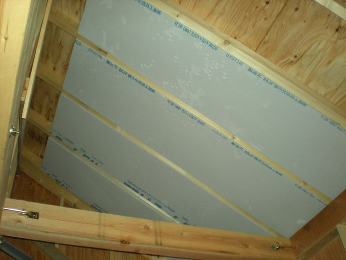 insulation%20on%20roof.JPG